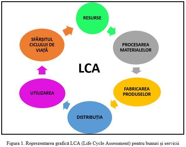 diagrama ciclului de viață larg a panglicii)